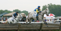 Brooks Durkee winning the Novice Timber at the Potomac Hunt Races on Battle Op in 2008